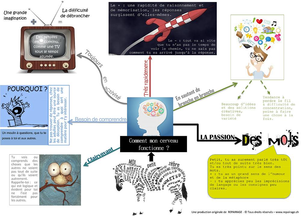 Infographie HP cerveau